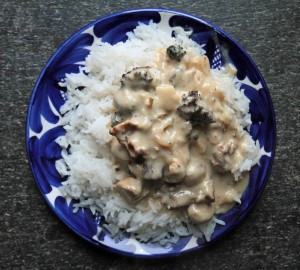 Chicken and morel stroganoff